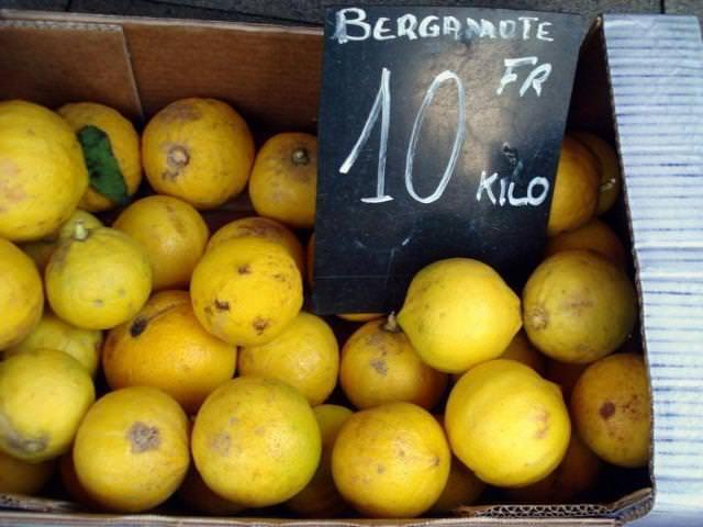 Бергамот - цитрус из Италии и Франции