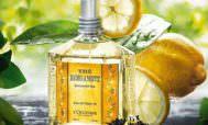 Бергамотное масло – магия аромата, эфирная терапия, косметическое средство